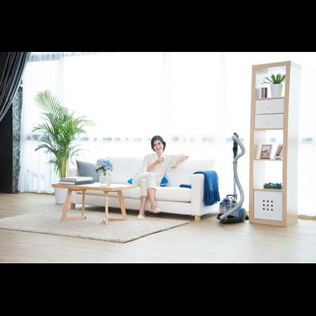 Påslösdammsugare med 12m räckvidd Electrolux Home
